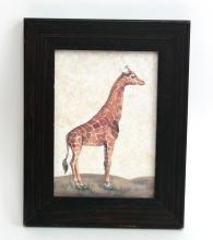 Vintage Giraffe color print in wooden frame covered with glass