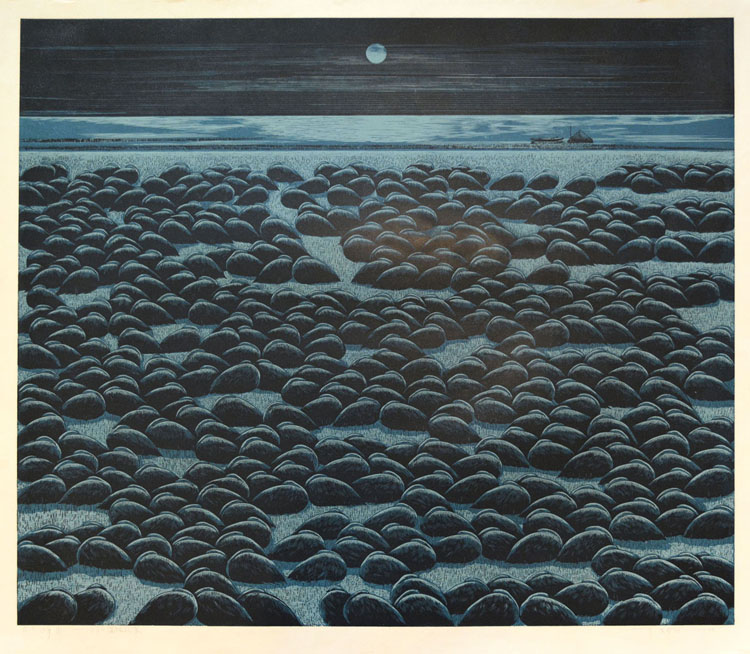 Moonlight at Wetland