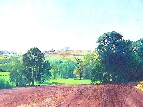 Richard Thorn, British 20th century-Rural landscape in summer; watercolour, signed, 37.5x72cm