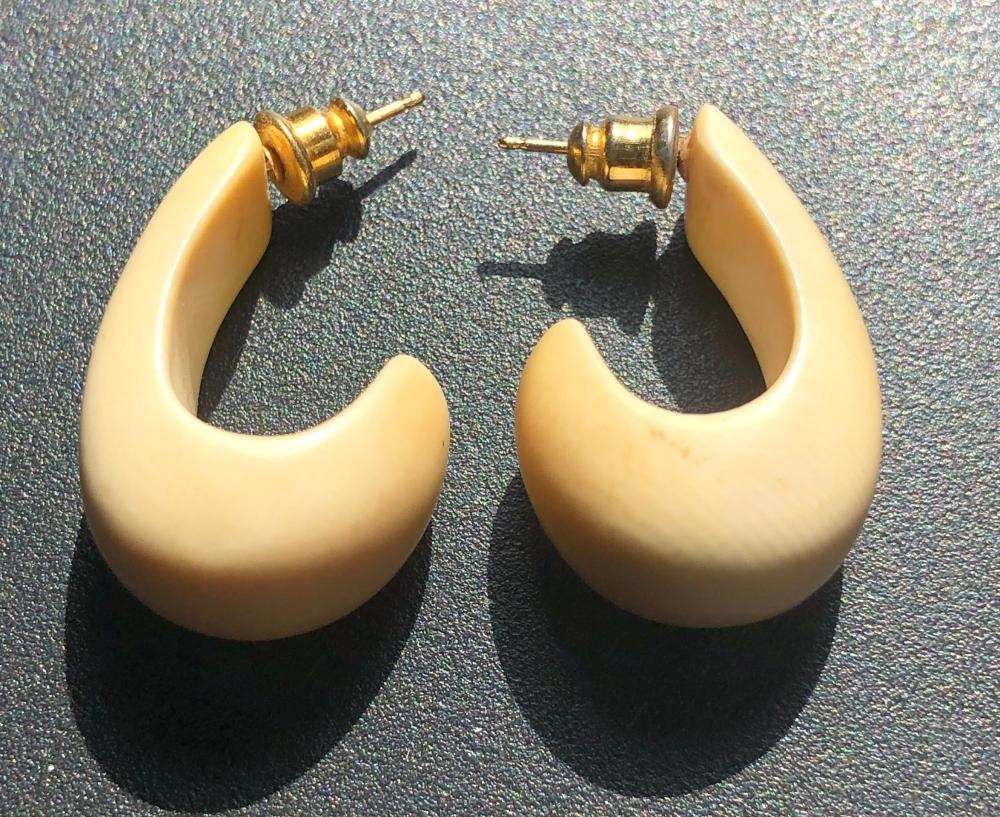Pair of Carved Earrings
