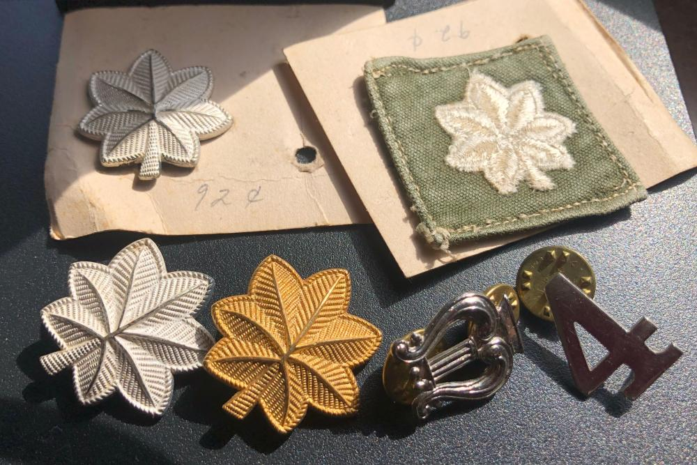 Group of military pins