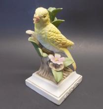Yellow canary ~ good