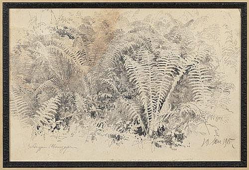 Andrey Nikolaevich Shilder (1861-1919)  - Ferns. 1915.