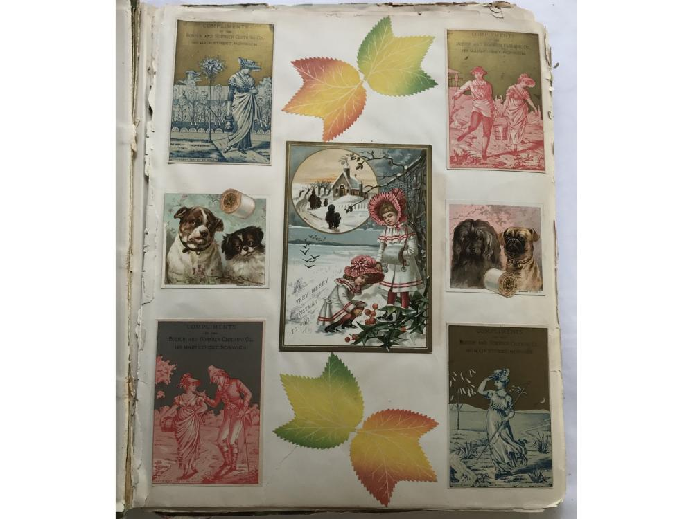 Loaded Victorian Trade Card Scrapbook