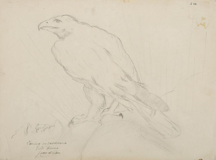 JUAN RENAU BERENGUER (Valencia 1913-1990) Aguila y ave
