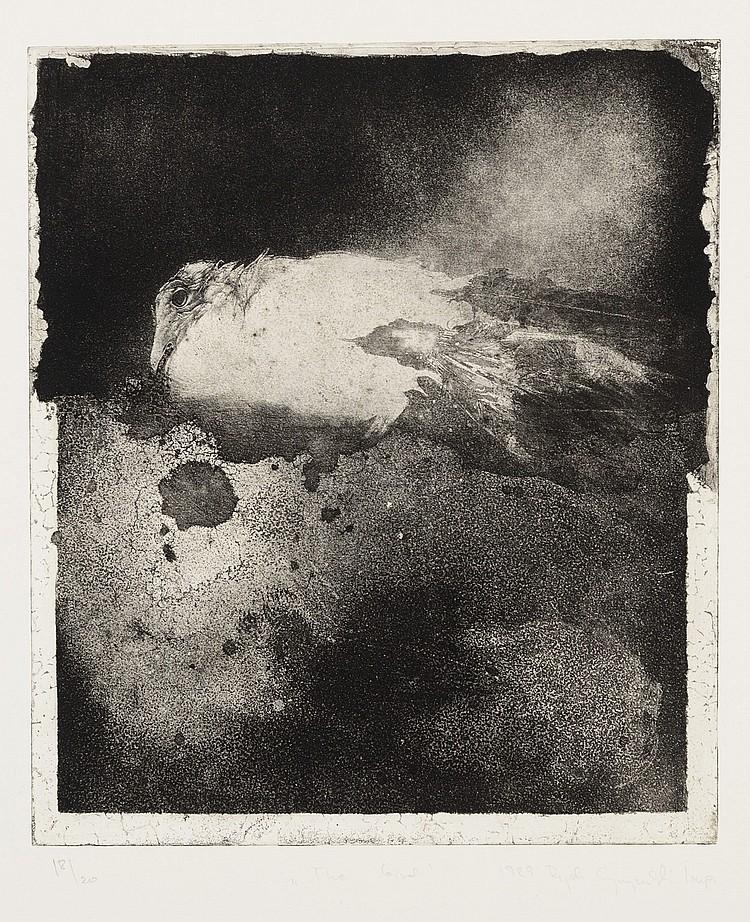 RYSZARD SZYMAMSKI (Torun, Poland, 1952) El pájaro y la vieja paloma. A pair of etchings and aquatints