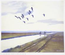 PETER SCOTT - The Wide Fens, Pinkfeet