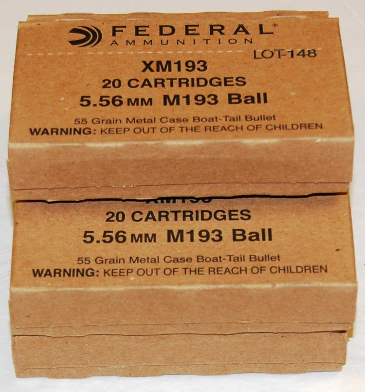Federal 5.56 mm Ammo, 100 Rounds