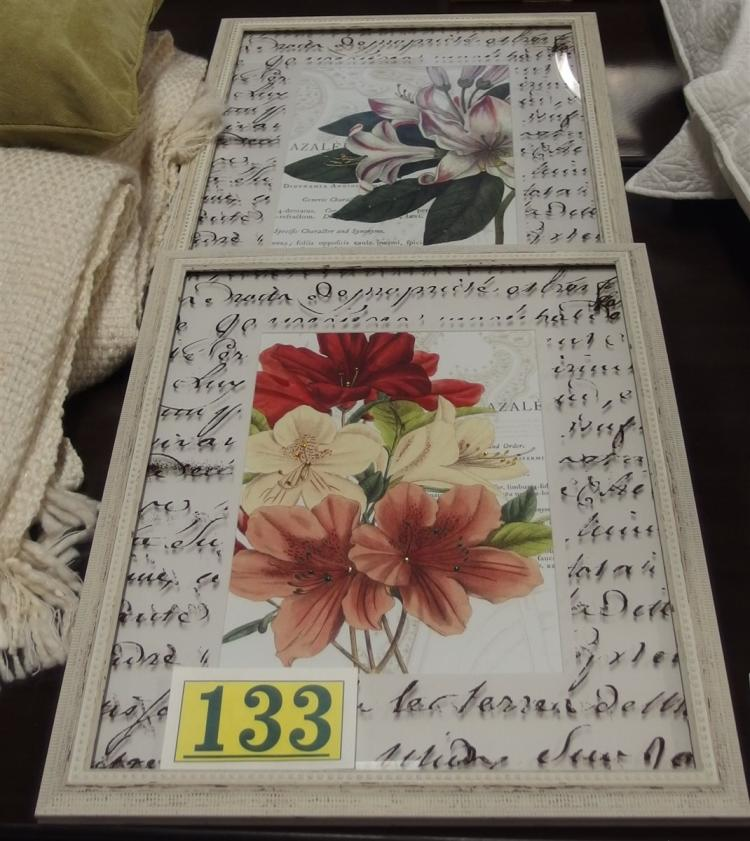 Pair of Floral Prints in Distressed Frame, 18x22