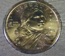Lot 113: Lot of 5 - Sacagawea Dollars First Day Minted