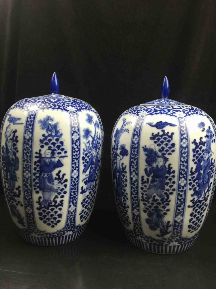 A Pair of Chinese Blue & White Porcelain Jar