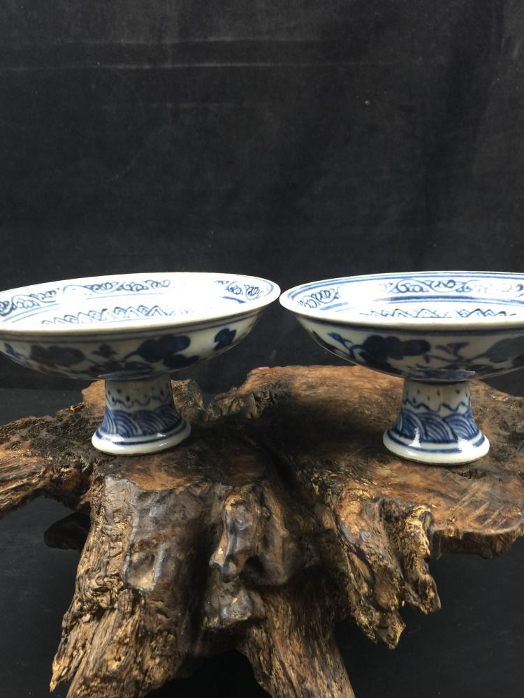 A Pair of Chinese Blue & White Porcelain Plate