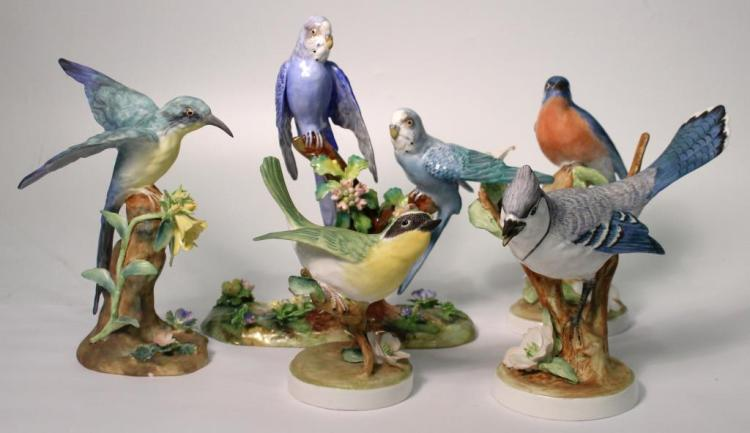 5 Staffordshire Bone China Birds