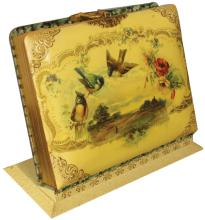 Celluloid Photo Album with easel