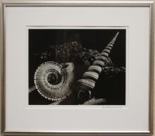 RUTH BERNHARD (1905-2006), SIGNED PHOTO