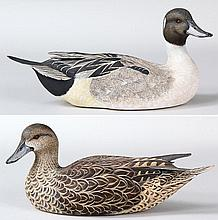 Pair of life size decorative Pintail by Capt. Fred Muhs.