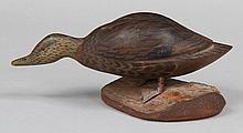 Miniature Black Duck by J. Ahearn