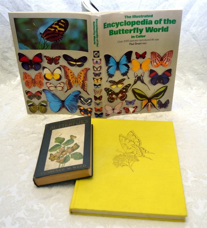 3 Vintage Butterfly Books