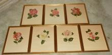 Lila Moore Keen's Vintage Camelia Flower Prints