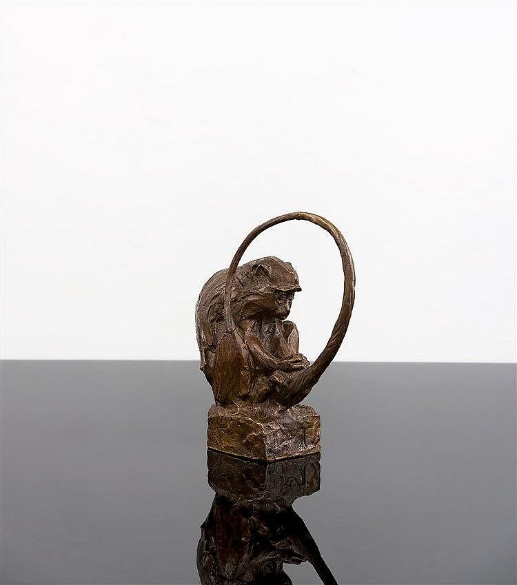 Dylan Lewis - Samango Monkey