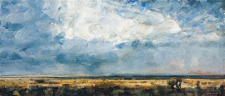 Walter Voigt - Karoo Storm Clouds