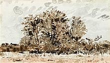 Adolph Stephan Friedrich Jentsch - Bushveld