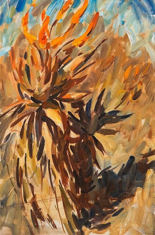 Dylan Lewis - Aloe Study