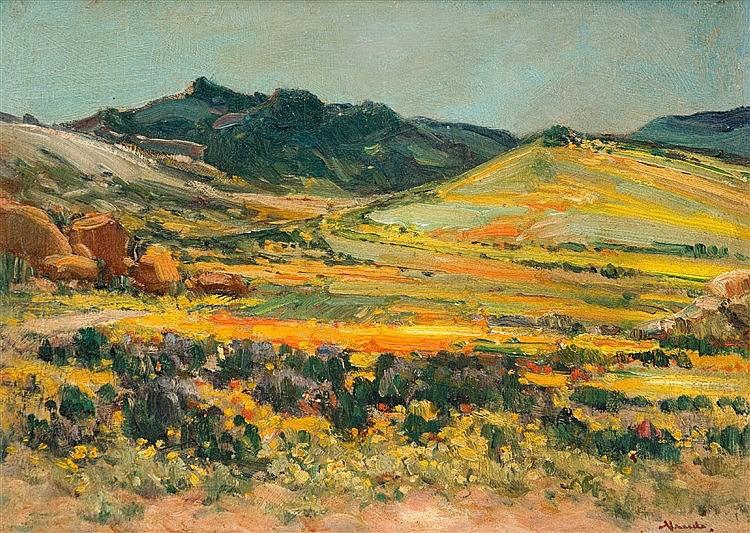 Pieter Hugo Naude - Springtime, Namaqualand