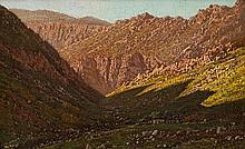 Tinus (Marthinus Johannes) de Jongh - Mountain Gorge
