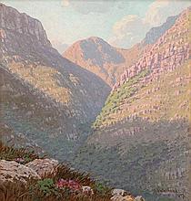 Jan Ernst Abraham Volschenk - A Mountain Kloof, South Africa