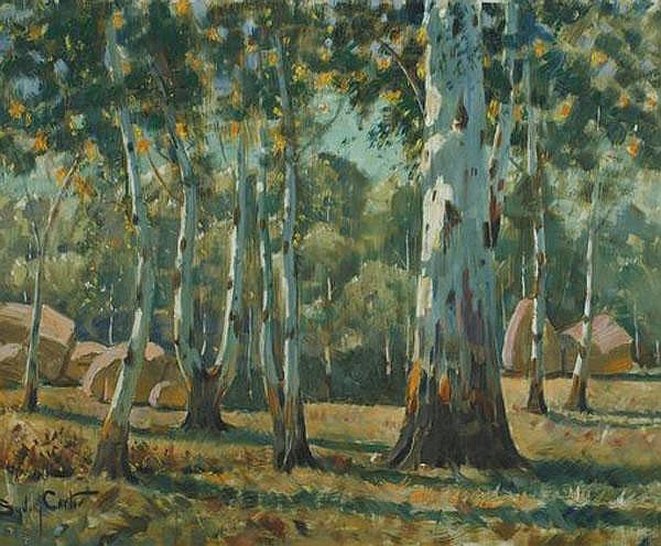 Sydney Carter South African 1874-1945 Bluegums,