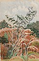 Edith Luise Mary King - A Young Tree in Pink Grass