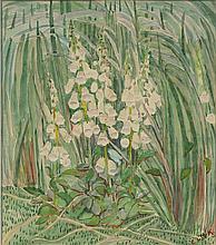 Edith King; Foxgloves
