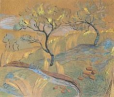 Trees Along a River Bank