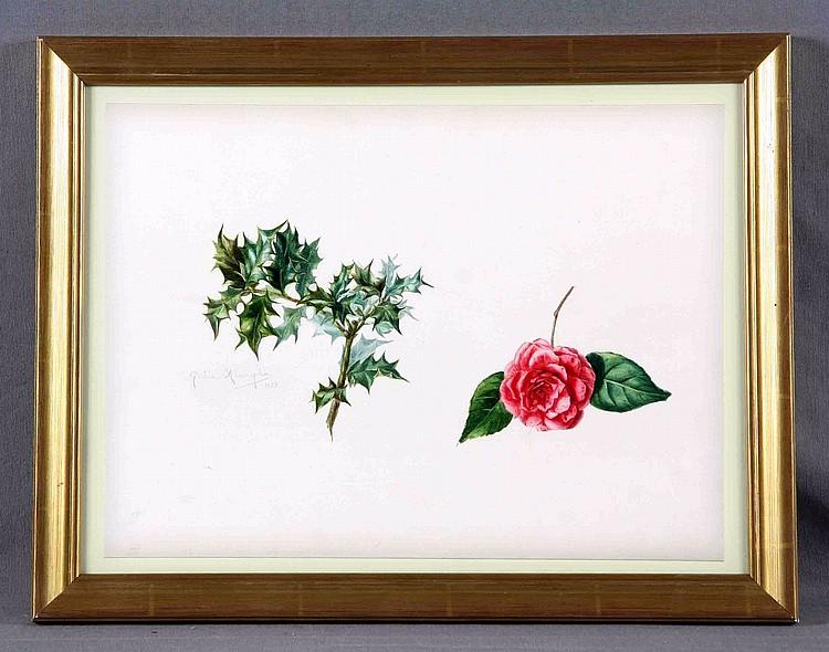 """ALCAYDE, JULIA (1885-1939) """"Rosa y rama con hojas"""". Watercolor"""