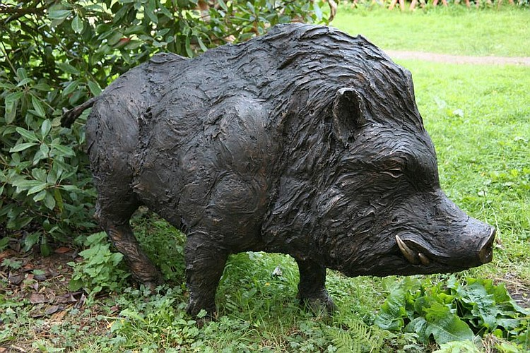 David Cooke Works on Sale at Auction & Biography Giant Wild Boar Photos