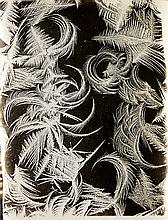 BENTLEY, WILSON A. (1865-1931) A suite of 4 photographs, comprising 2 frost studies and 2 early snow crystals.