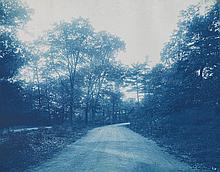 (CYANOTYPES) Album with more than 75 poetic, seasonal photographs of Boston,
