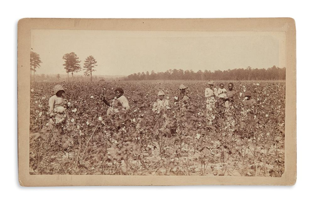 (PHOTOGRAPHY.) Promenade card of field hands on a cotton plantation.