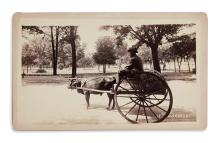 (PHOTOGRAPHY.) Group of 4 photographs of scenes in Florida.