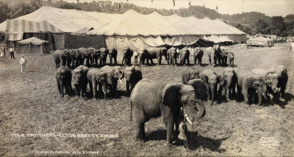 KELTY, EDWARD J. (1888-1967) Group of 4 animal-centric circus panoramas,