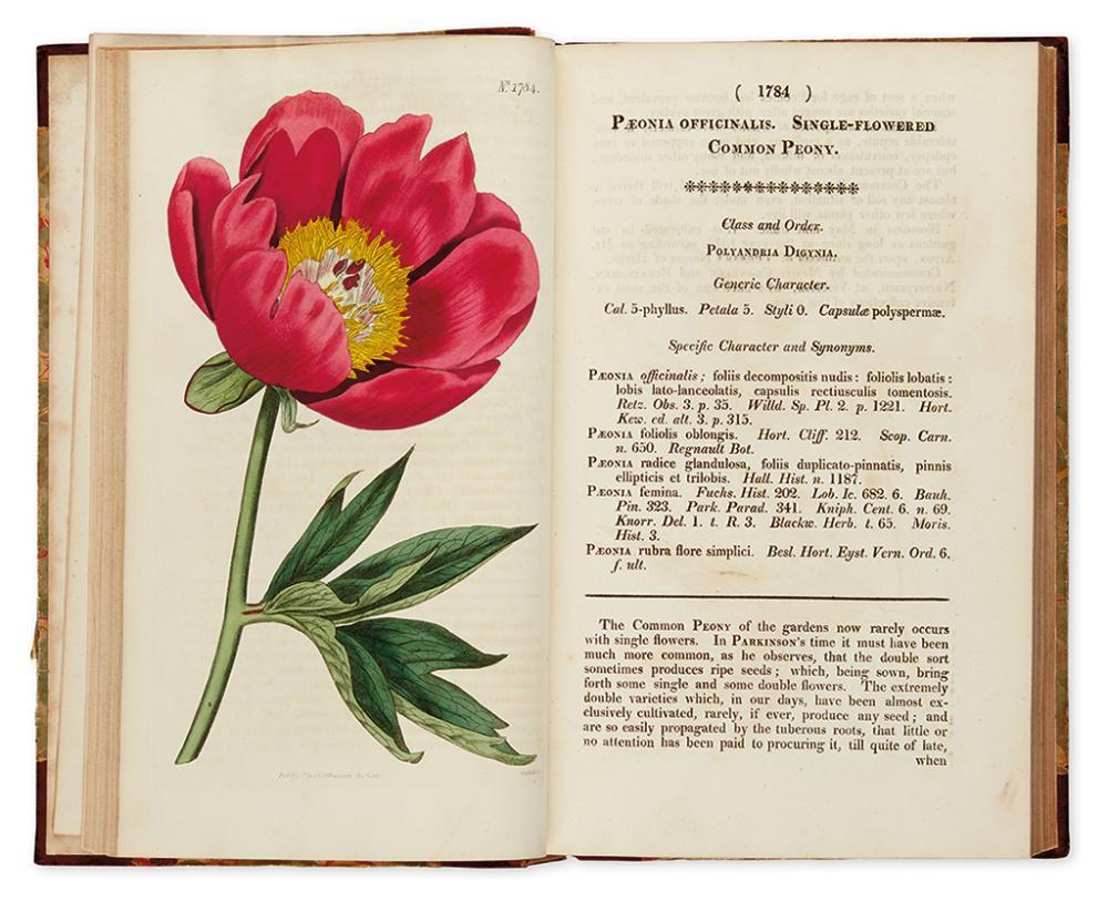 CURTIS, WILLIAM. Curtis''s Botanical Magazine; or, Flower-Garden Displayed. Vol. XLIII.