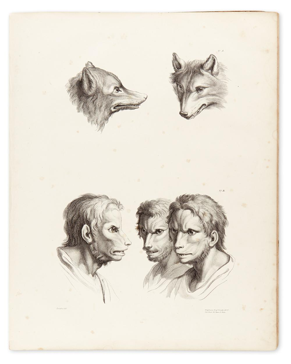 LE BRUN, CHARLES. A Series of Lithographic Drawings Illustrative of the Relation Between the Human Physiognomy