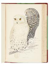 MORRIS, F.O. A History of British Birds.