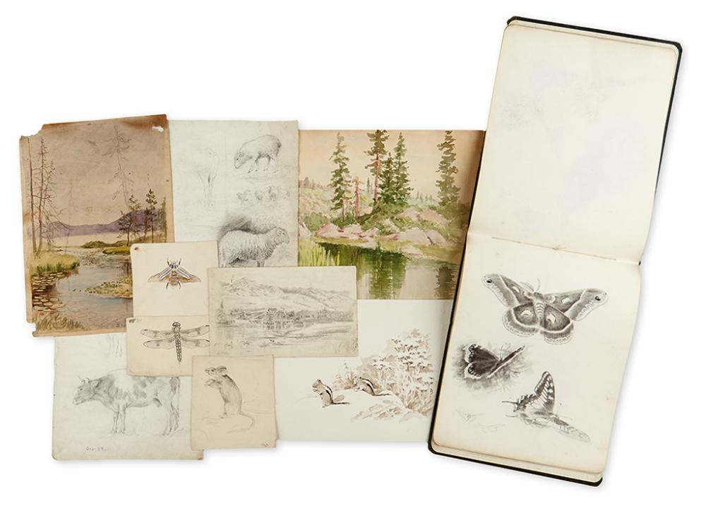 BROWNING, GEORGE WESLEY (1868-1951). Collection of 134 loose sketches of natural history and landscape subjects.