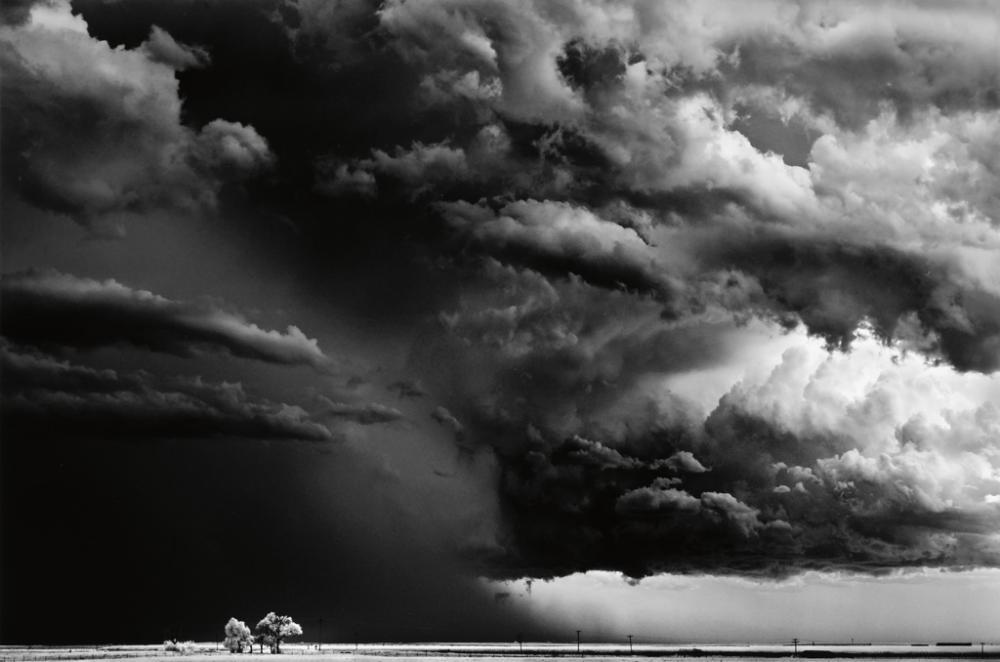 DOBROWNER, MITCH (1956- )