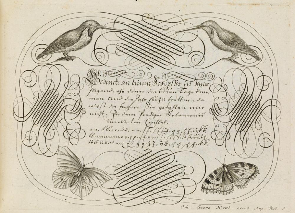 (BOOK ARTS / TYPE / CALLIGRAPHY.) Losenauer, Johann Jacob. Vorhrifft Teütsch-Lateinisch-und-Französischer Schriften.