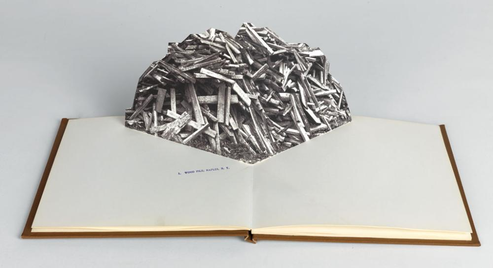 (POP-UP / MOVABLE BOOKS.) John Pfahl. Piles: A Pop-Up Book by John Pfahl.