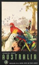 JAMES NORTHFIELD (1887-1973). AUSTRALIA / AUSTRALIAN PARROTS. Circa 1935. 39x25 inches, 100x63 cm. F.W. Niven, Melbourne.