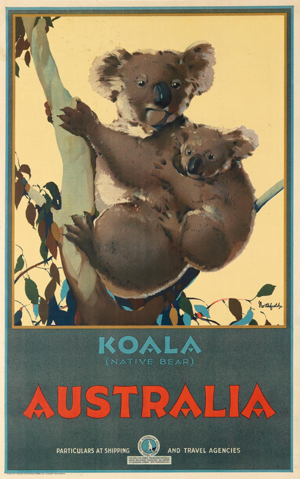 JAMES NORTHFIELD (1887-1973). AUSTRALIA / KOALA (NATIVE BEAR). 1931. 39x25 inches, 99x63 cm. J.E. Hackett, Melbourne.